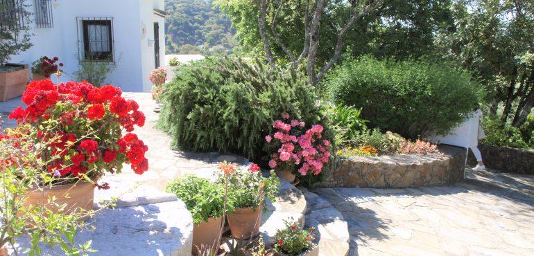 Villas and Finca's