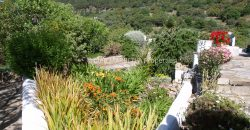 Converted 18th century Mill a gardeners paradise
