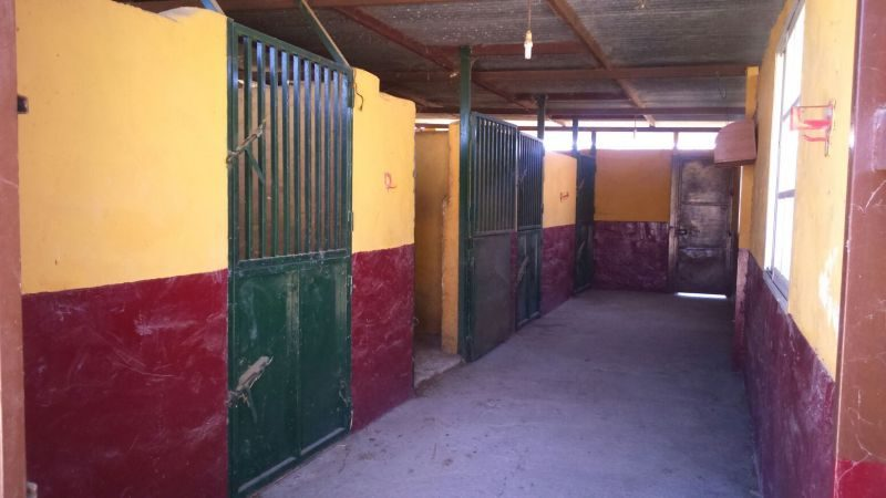 Country property – 5 stables