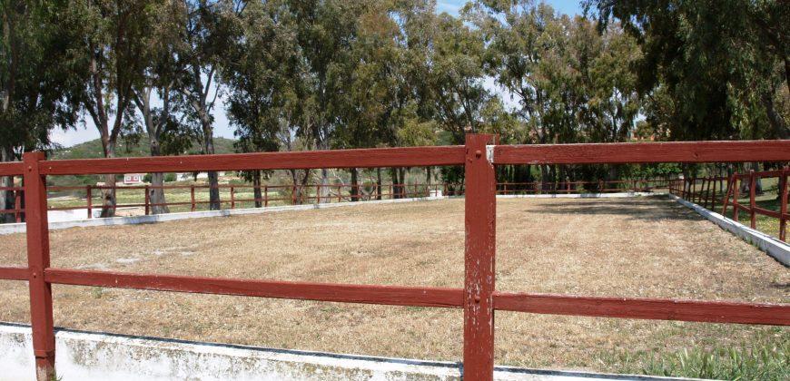 Stunning Equestrian Finca near Manilva