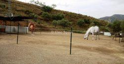 Horse Finca With Views