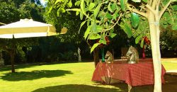 Equestrian Property with Polo Club