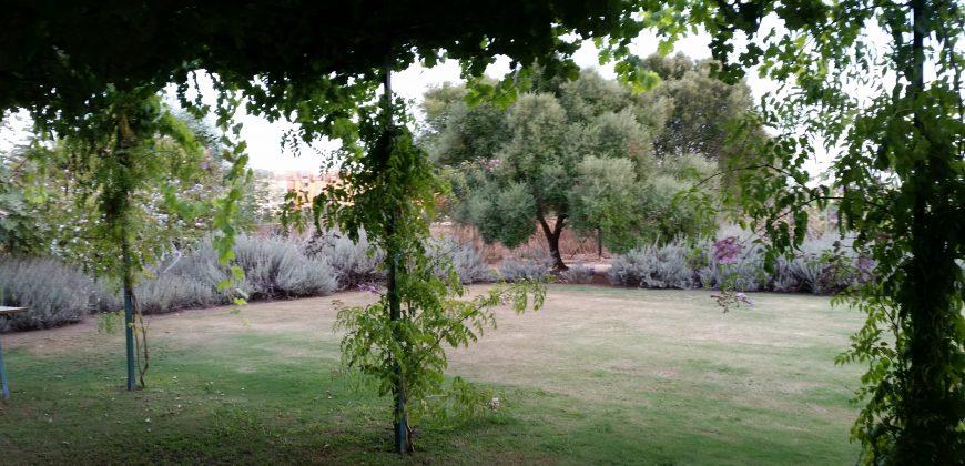 Quaint Andalucían Country Property