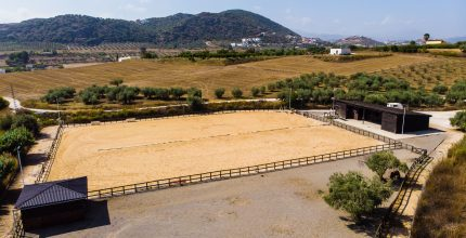 Luxury Equestrian Property – R00332