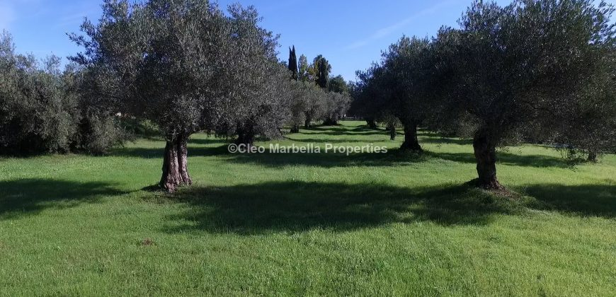 Equestrian Property plus project