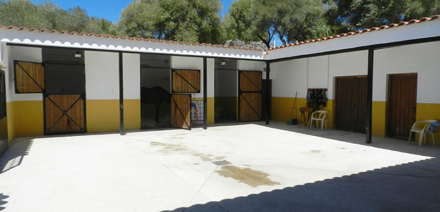 Modern Country Property with Stables