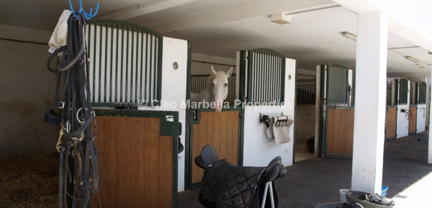 Stunning Property – Equestrian Events