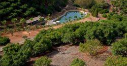 Hillside Equestrian Property – Coin