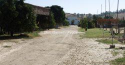 Large Equestrian Property – Sotogrande