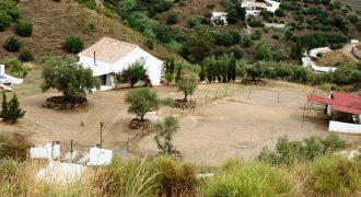 Horse Finca With Views also for Rent