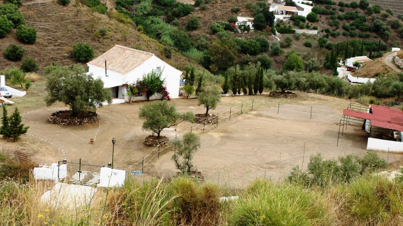 Horse Finca With Views also Rent to Buy