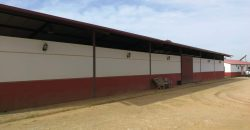Equestrian Center looking for a new tenant, or owner