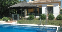 Wonderful finca near Selwo – Estepona