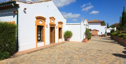 Large Equestrian Property – 12 Stables