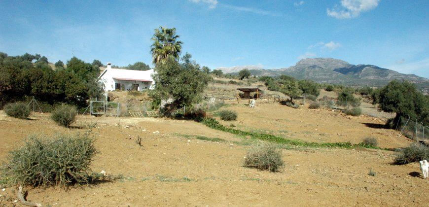 Unique finca with stables Tolox