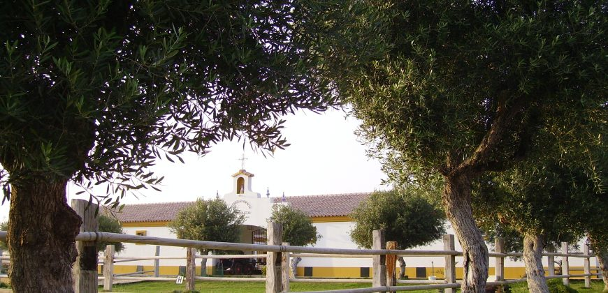 Equestrian centre in Puerto de Santa Maria