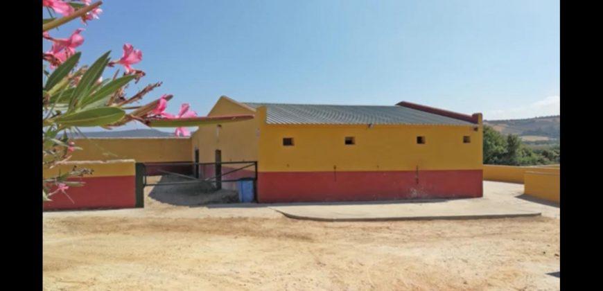 Equestrian Property -fantastic views – Arcos De La Frontera
